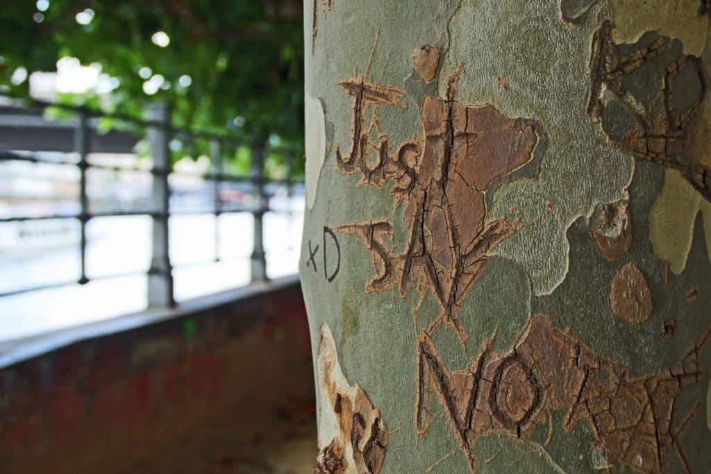 """Just say no"" - geritzt in Baumstamm Foto: stencil"